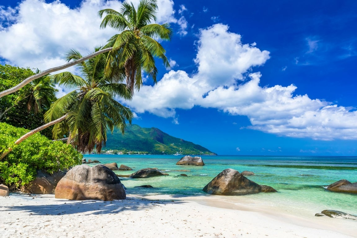 Huwelijksreizen Afrika: Palmbomen en basalte rotsblokken op Seychellen strand