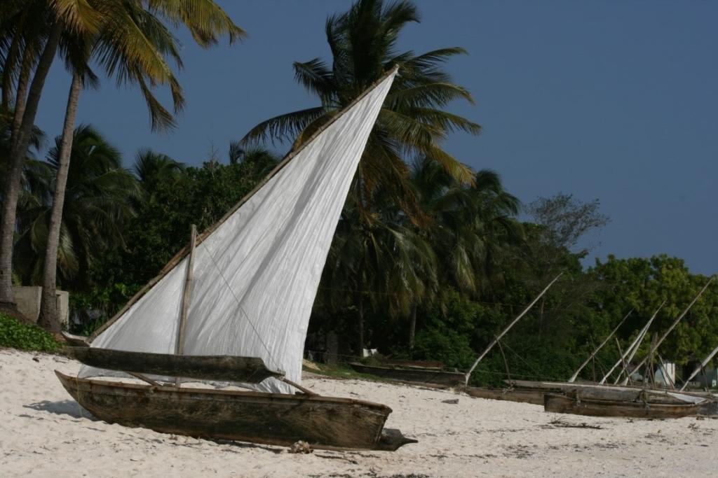 Dhow op het strand van Zanzibar - Rondreis door noordelijk Tanzania en Zanzibar