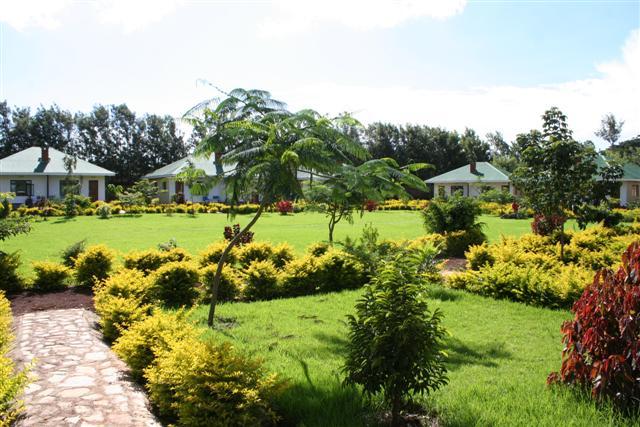 Kindvriendelijke reizen Tanzania - Huisjes in mooie tuin waar kinderen kunnen spelen