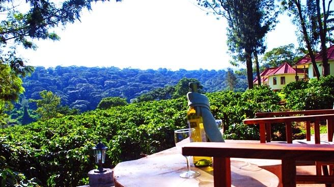 Hhando Coffee Lodge - uitzicht