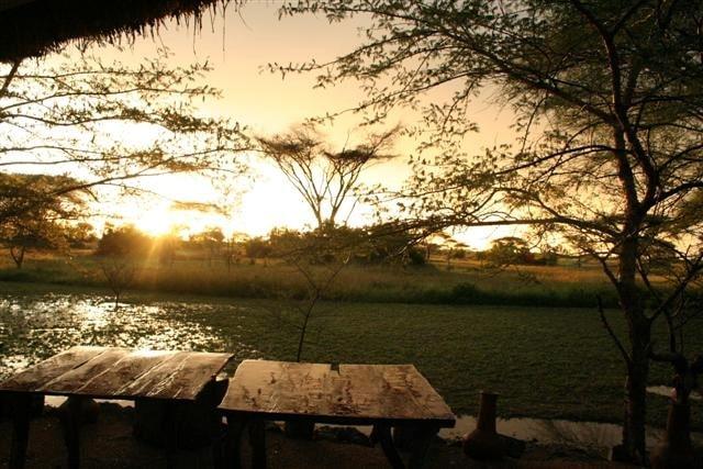 Rondreizen Tanzania: Serengeti na regenbui