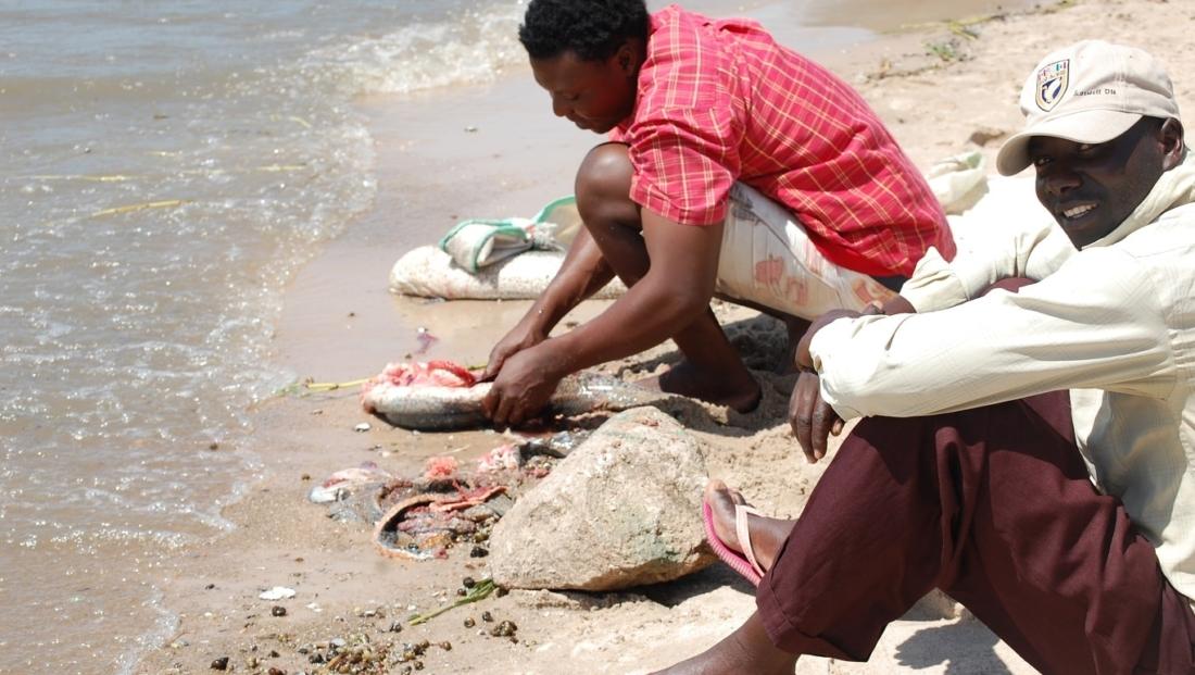 Lake Victoria - vis schoonmaken bij het meer