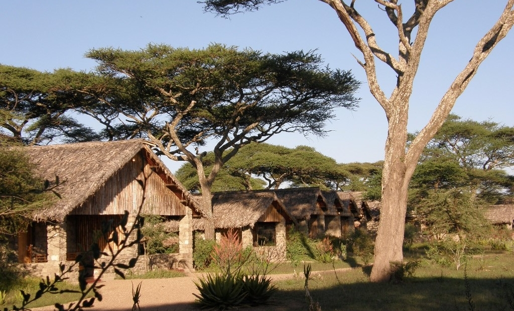 Ndutu Safari Lodge - huisjes