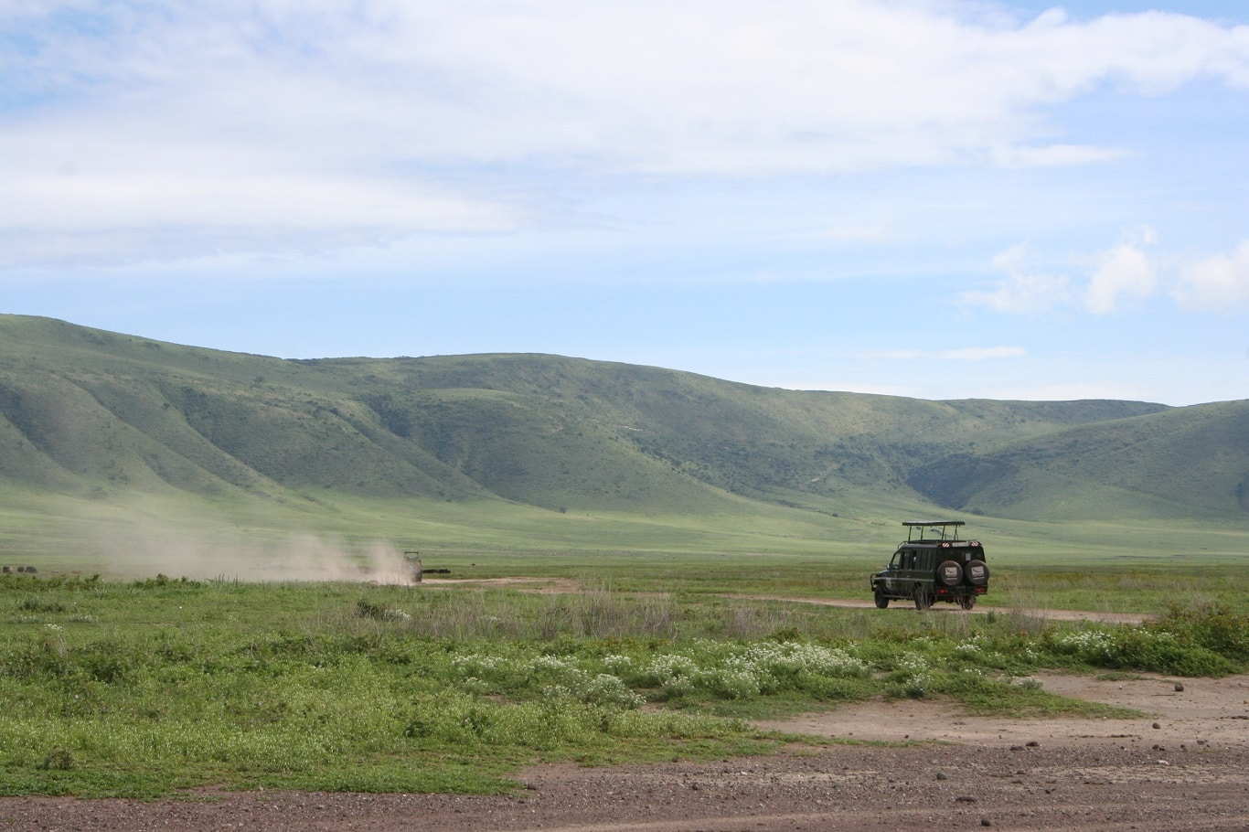 Ngorongoro Krater - game drive
