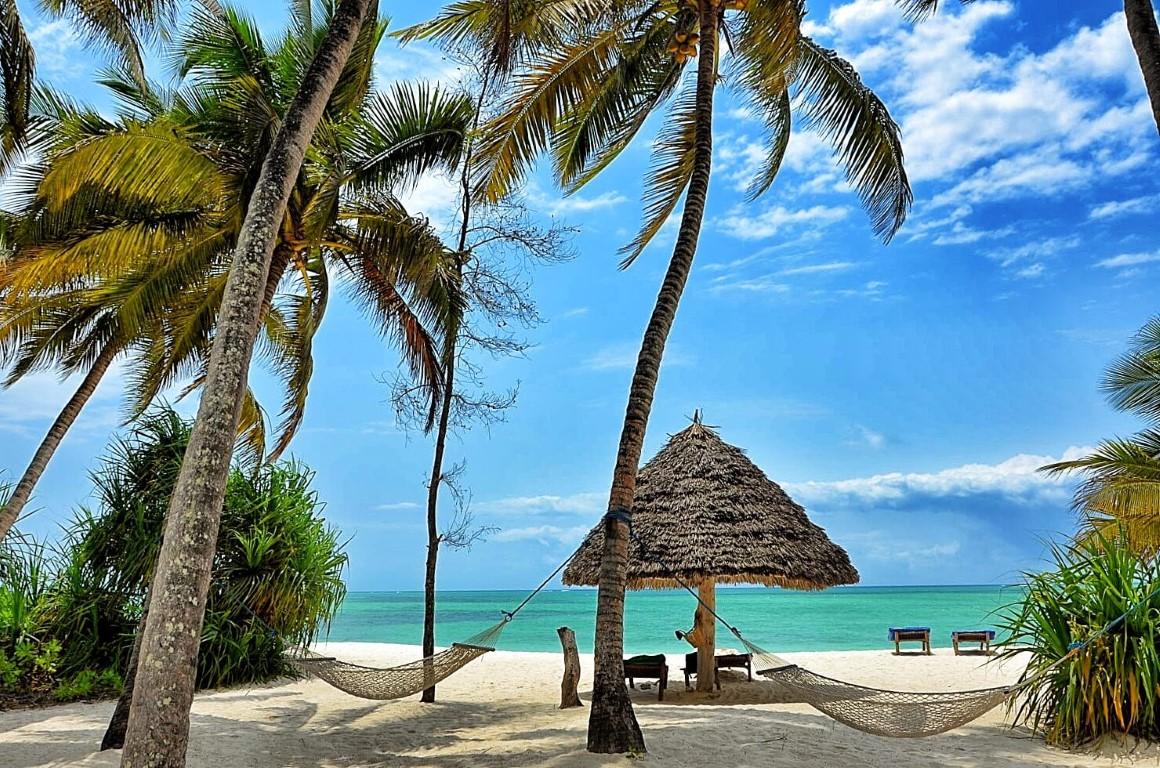 Safari & Strand reizen Afrika - Wit strand, palmbomen, hangmatten bij Pongwe Beach Hotel, Zanzibar