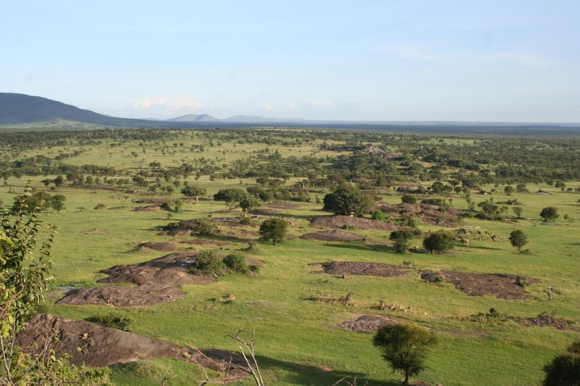Huwelijksreizen Tanzania - De indrukwekkende Serengeti