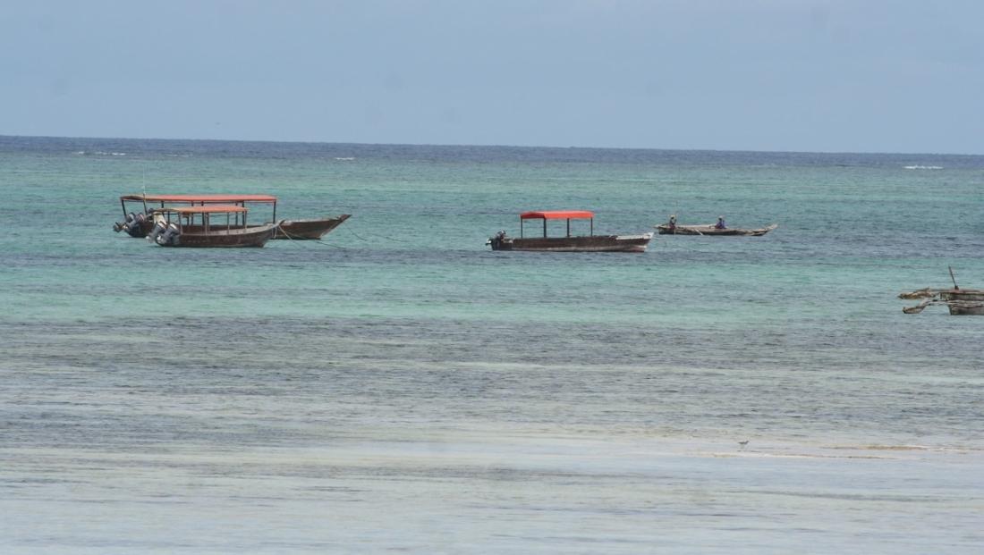 Zanzibar - bootjes in zee