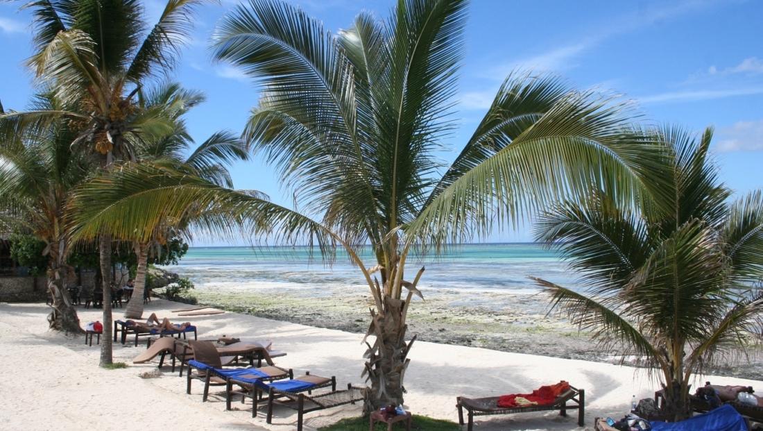 Zanzibar - strand met palmbomen
