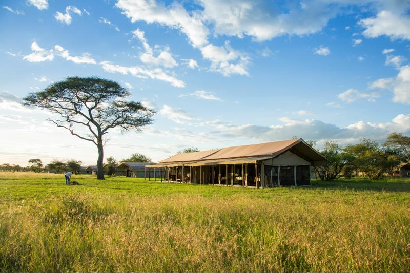 Thorn Tree Tented Camp - grote tent