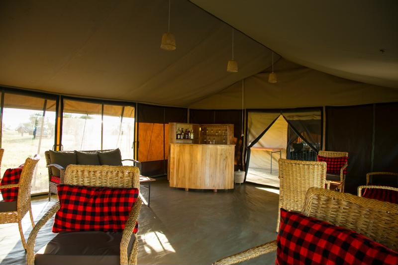 Thorn Tree Tented Camp - bar - lounge