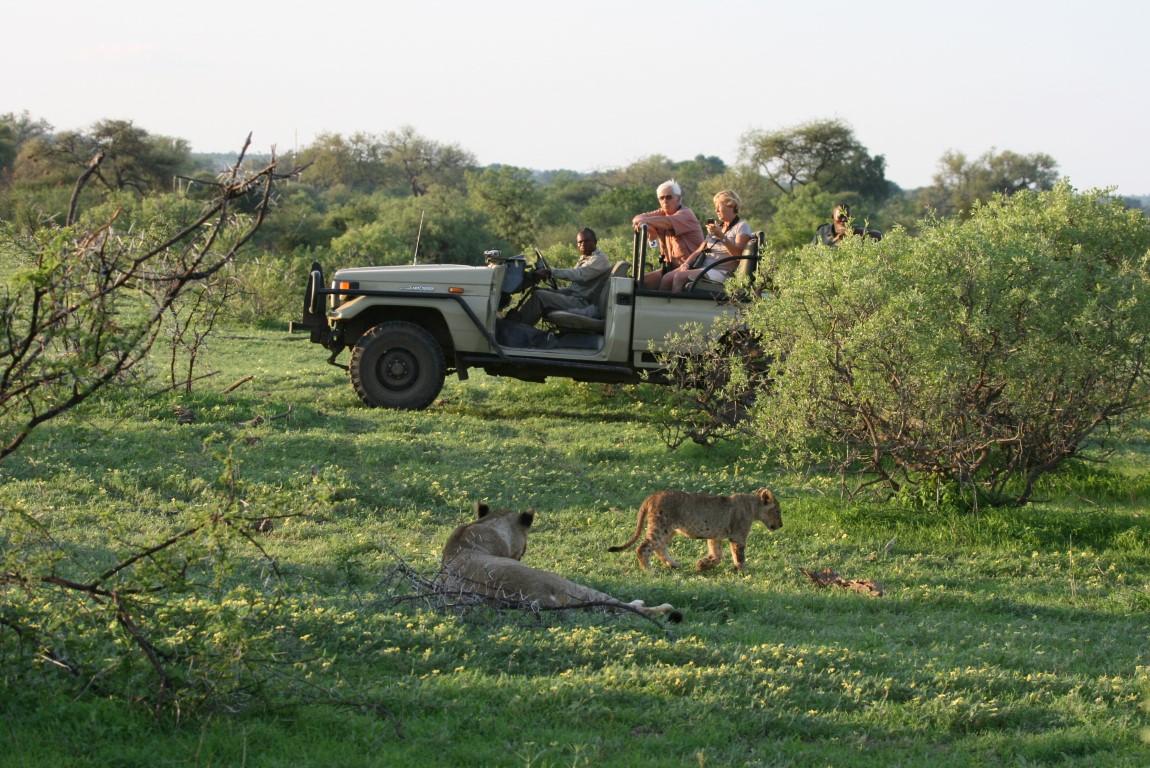 Rondreizen Botswana: Het Tuli Block is relatief onbekend, maar ook een mooi safarigebied.