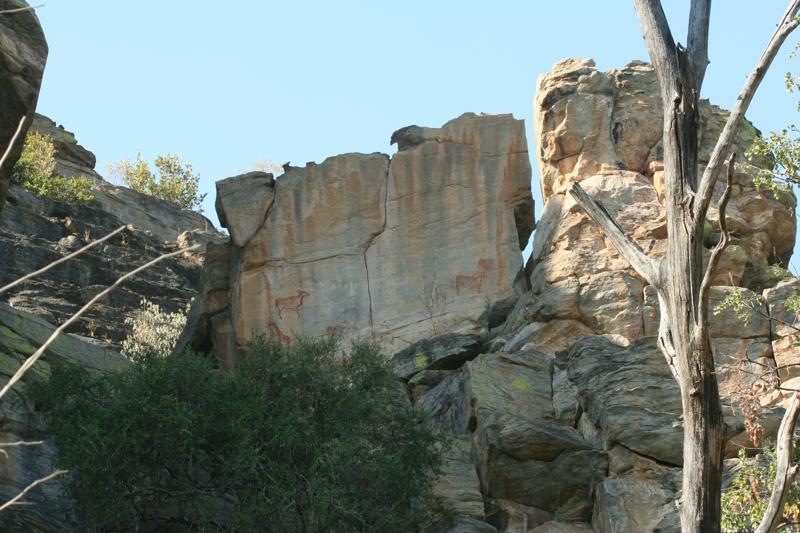 Rotstekeningen, Rock Art, Tsodilo Hills, Botswana - De leukste activiteiten in Botswana