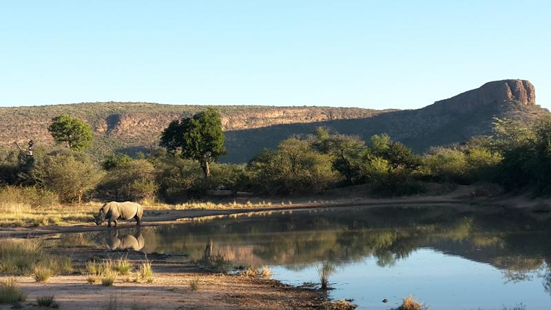 Safari, Waterbergen, Zuid-Afrika - Bezienswaardigheden Zuid-Afrika