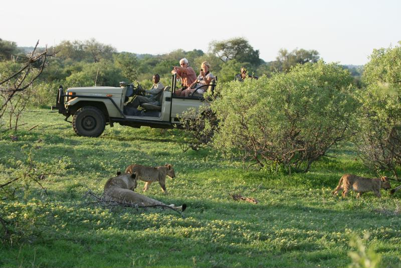 Wildrit, Kalahari, Botswana - De leukste activiteiten in Botswana