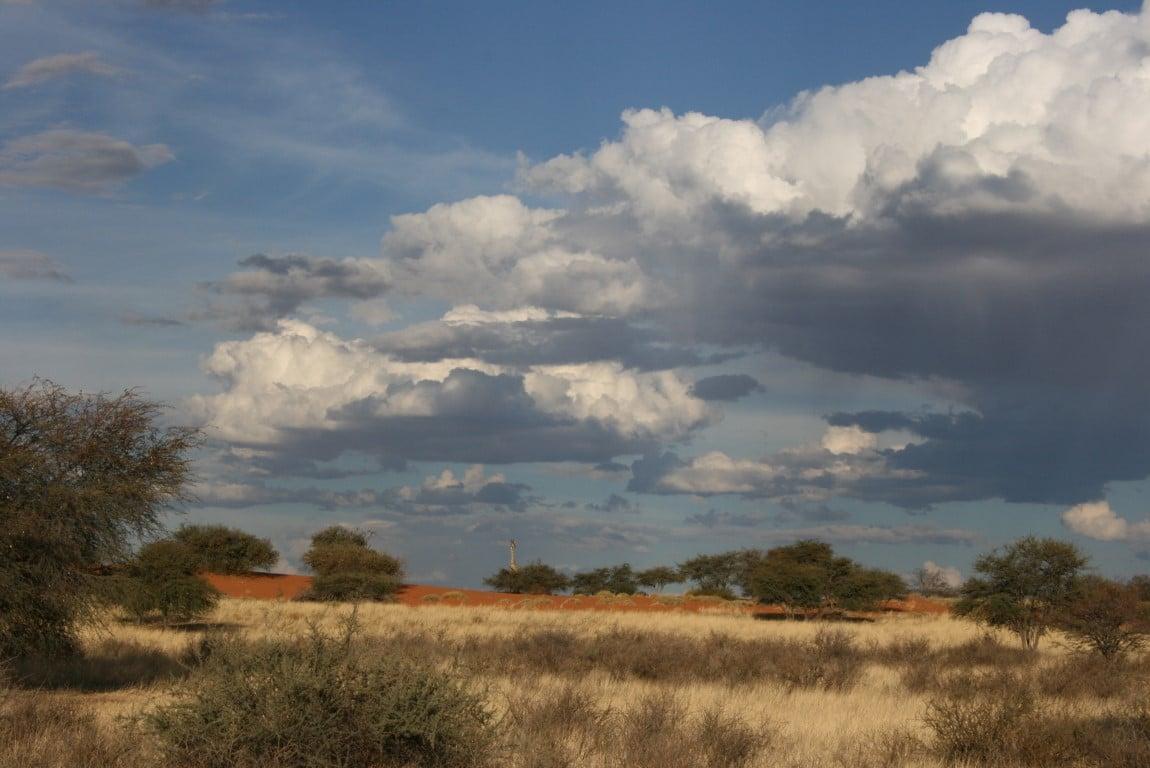 Kalahari landschap - Combinatie vakantie Afrika