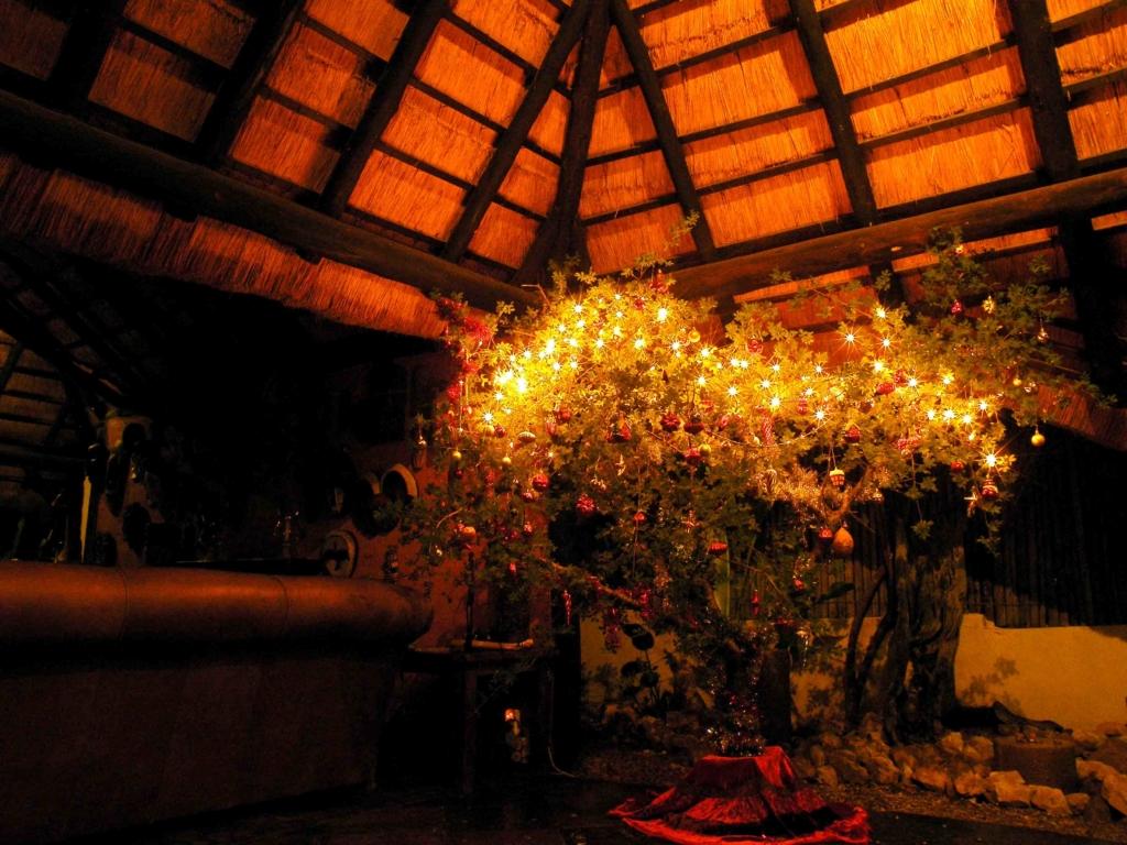 Dennenboom, versiering, Kerst, Zuid-Afrika - In december naar Zuid-Afrika