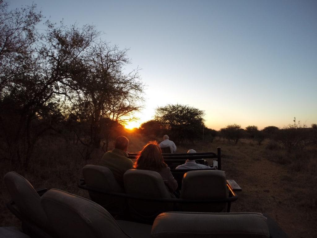 Een 21 daagse rondreis door Zuid-Afrika? Dit is de route langs de hoogtepunten! Vroeg op voor de ochtendwildrit in een privé safari lodge, Zuid-Afrika