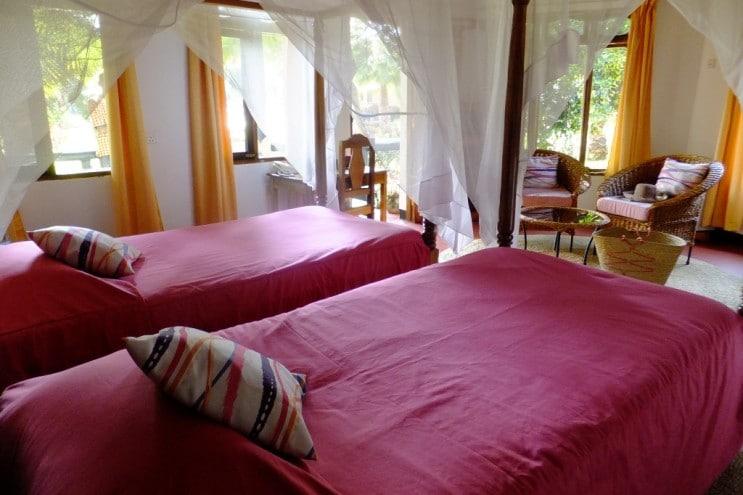 Bougainvillea Safari Lodge - hotelkamer