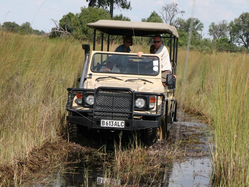 Beste reistijd Botswana - gamedrive in de Okavango Delta