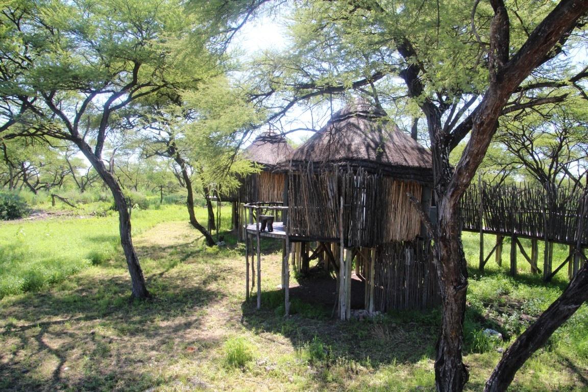 Exclusieve bestemmingen in Namibie - boomhut, Tree Top Camp, Onguma, Etosha, Namibie
