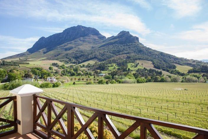 Banhoek Lodge - uitzicht over wijngaarden