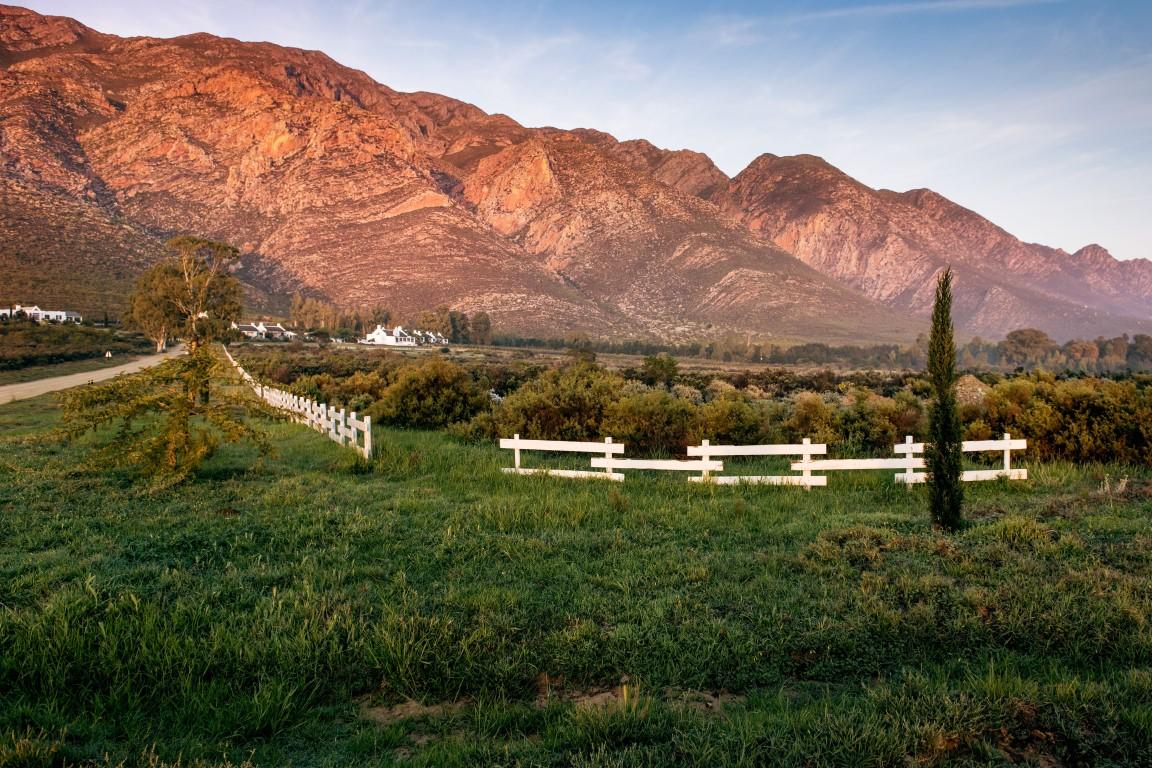 Galenia Estate - bergen op achtergrond