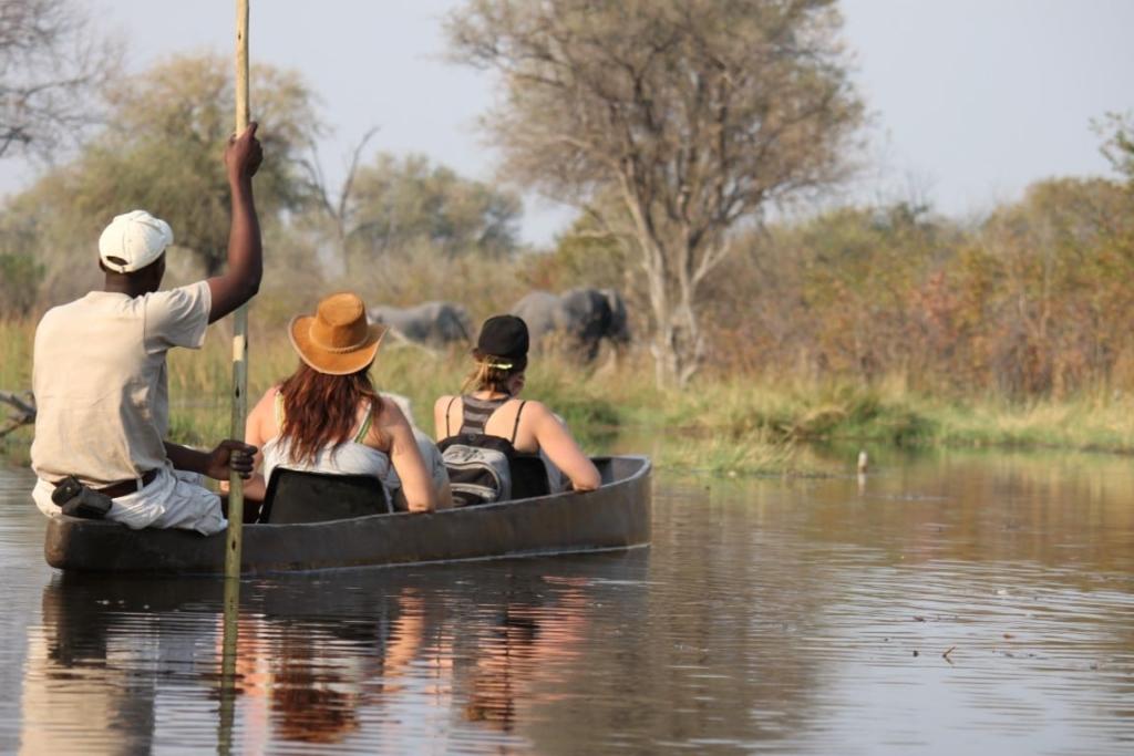 Sango Safari Camp - Mokortocht Okavango Delta met olifant