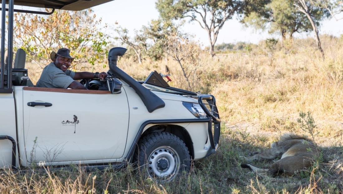 Sango Safari Camp - Wildrit met slapende leeuw