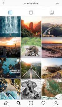 Nieuwsbrief Out in Africa - Instagram Zuid-Afrika