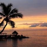 Rondreizen Seychellen - Zonsondergang over oceaan en palmboom