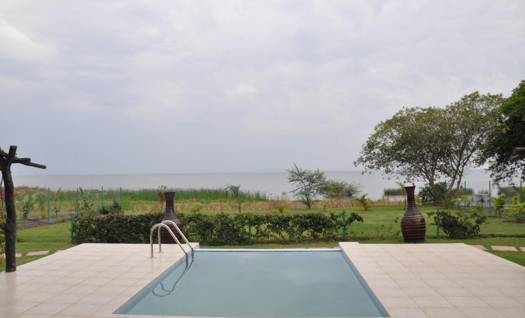 Serengeti on the Lake - zwembad