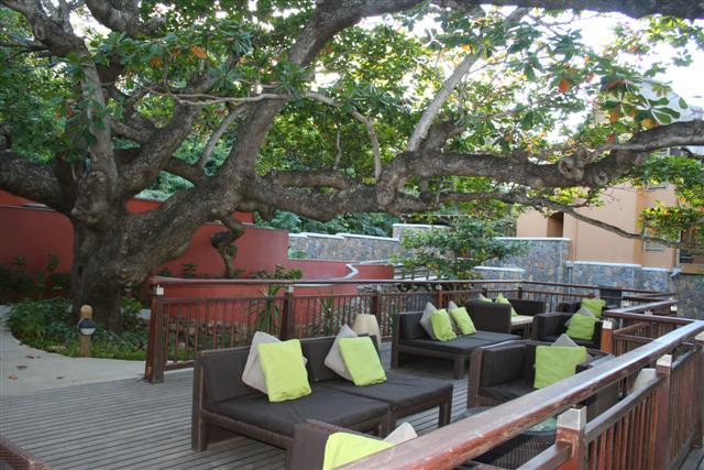 Tamarina - Lounge terras
