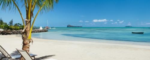 Zilwa Attitude - Strand met ligbedden onder palmboom