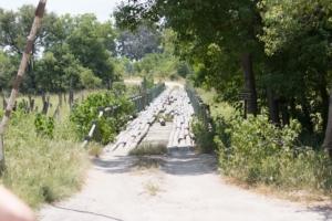 Olmo van Herwaarden - Houten brug