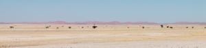 Olmo van Herwaarden - Landschap Namibië