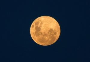 Olmo van Herwaarden - Volle maan