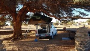 Kamperen met daktent onder boom