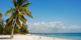 Mozambique - Wit strand, blauwe zee, palmbomen