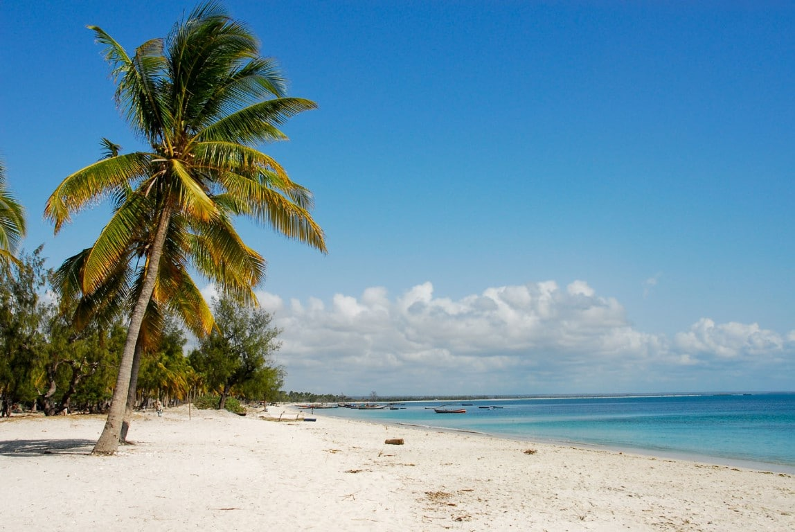 Rondreizen Zuid-Afrika Mozambique - Wit zandstrand, wuivende palmbomen en warme Indische Oceaan