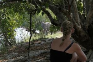 Fam.. Peterse - Olifant bij kampeerterrein
