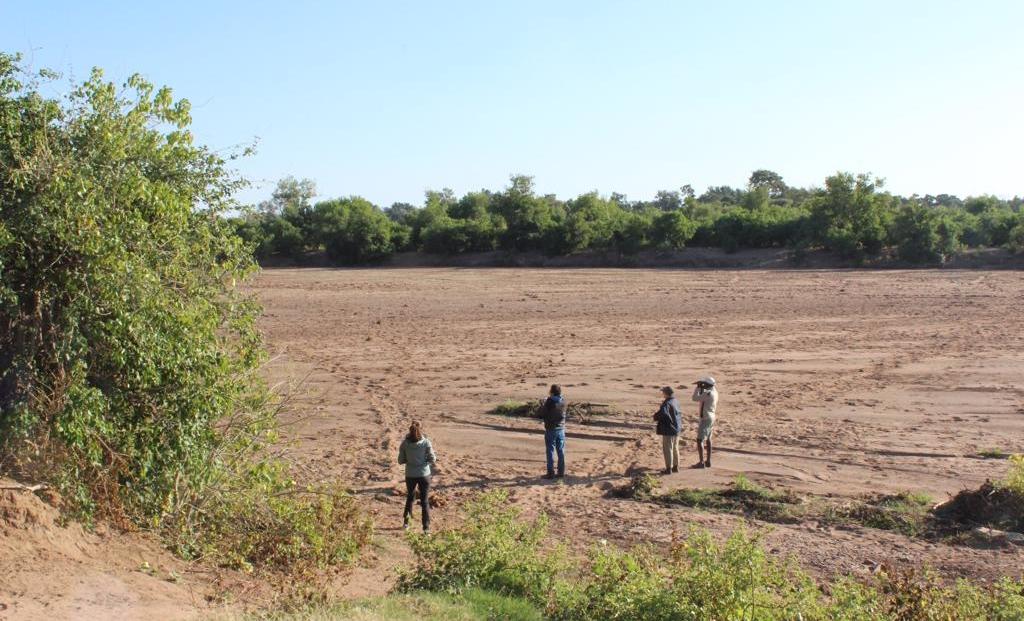 Molema Bush Camp - Wandelen in droge rivierbedding