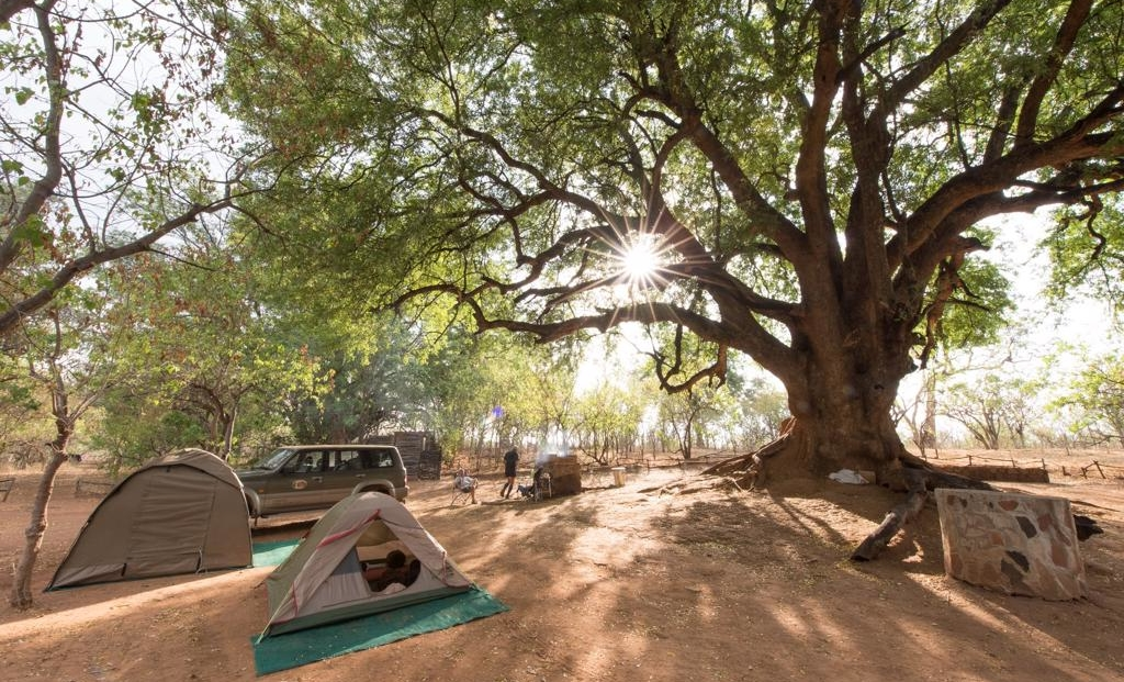 Molema Bush Camp - Kampeerterrein
