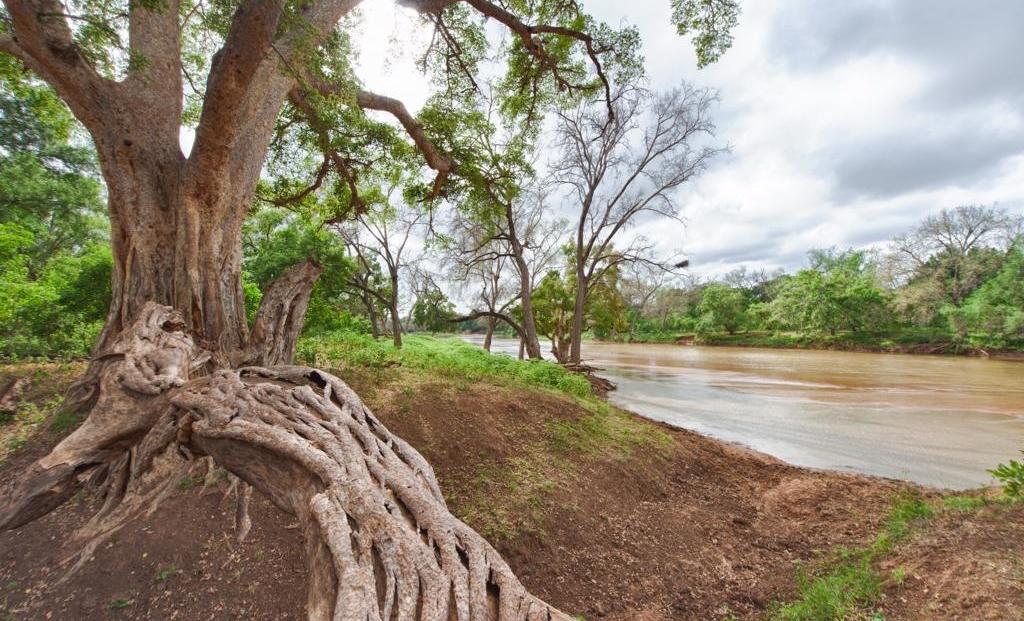 Molema Bush Camp - Stromende rivier