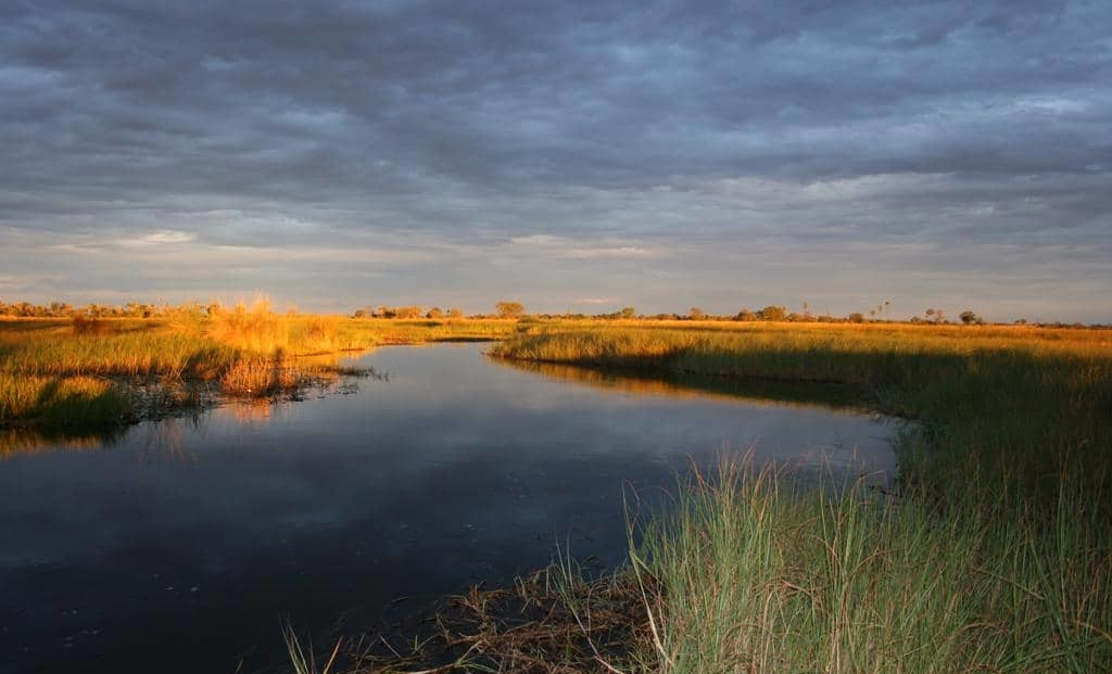 Moremi Game Reserve - Uitzicht over de vlaktes en het water
