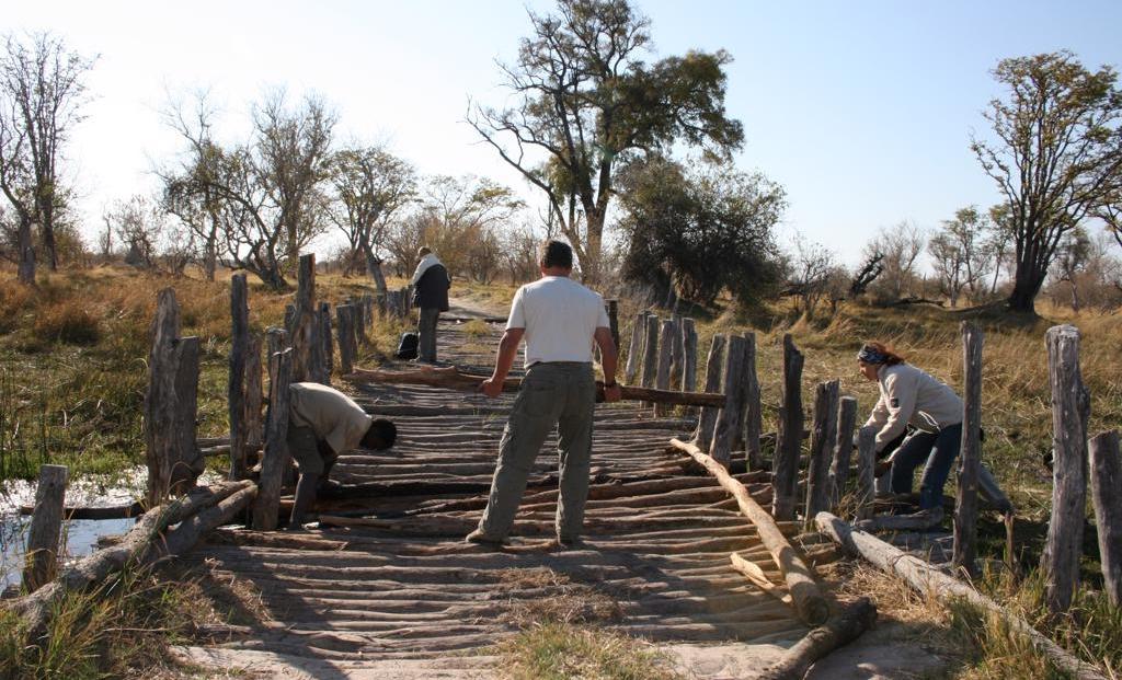 Moremi Game Reserve - Bruggen van houten palen