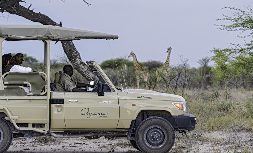 Onguma Campsite - game drive - giraffen