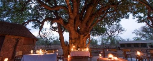 Serolo Safari Camp - Diner bij kaarslicht onder grote boom