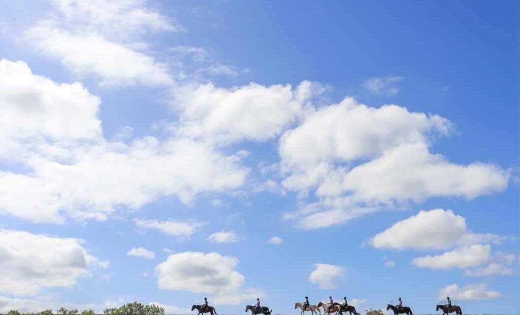 Woodbury Tented Camp - paardrijden