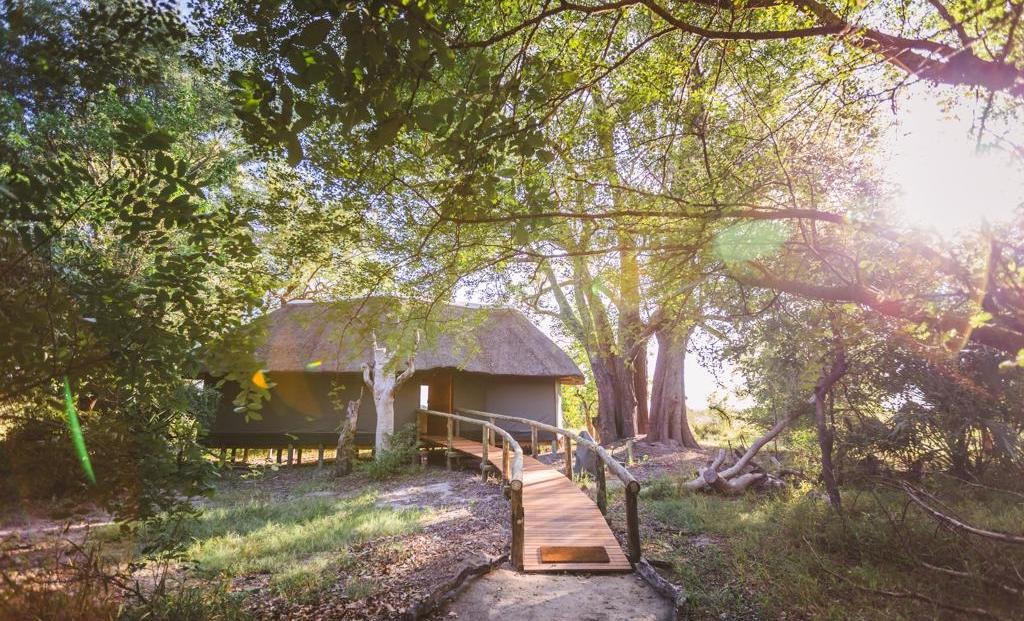 Camp Moremi - En-suite safari tent op vlonder