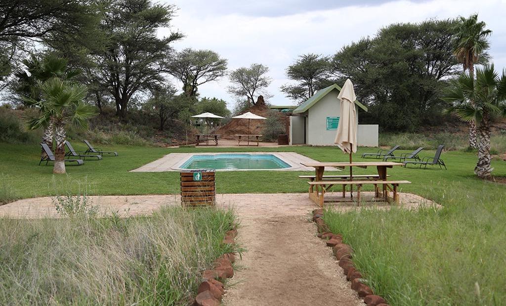 Erindi Camp Elephant - Zwembad met ligbedden
